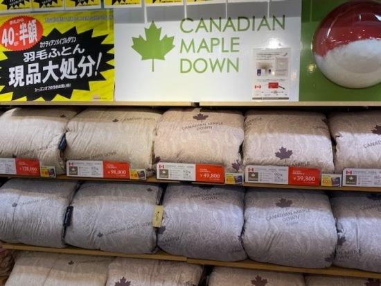 一例として 羽毛ふとん<CANADIAN>GOLD 表地:ポリエステル35%綿65%